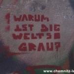 Chemnitz ergraut auf DW-TV