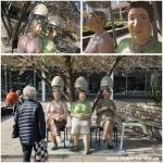 Die drei Damen vom… Rosenhof