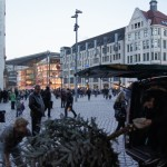 Warten auf den Weihnachtsbaum