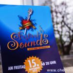 Festival of Sounds 2013